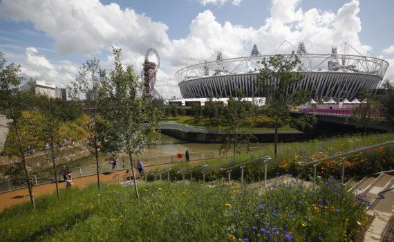 Cvijetni vrt s mladim stablima ispred rijeke i građevina u pozadini.