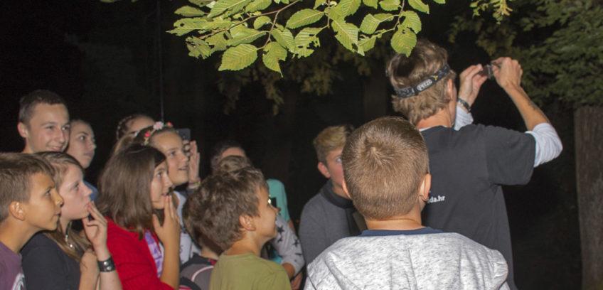 Djeca gledaju kako istraživačica vadi šišmiša uhvaćenog u mrežu za lov šišmiša.