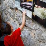 Dijete stoji pred fotografijama šišmiša na zidu i promatra jednu od njih.