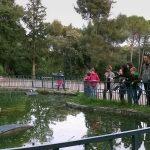 Posjetitelji stoje uz ogradu oko jezera.